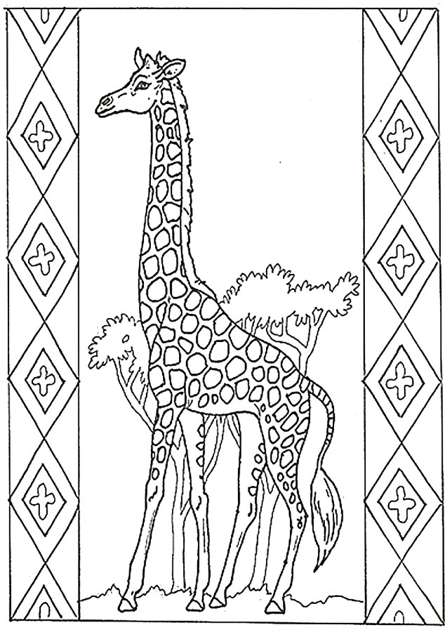 Giraffe Coloring Pictures, Giraffe Pictures you can color